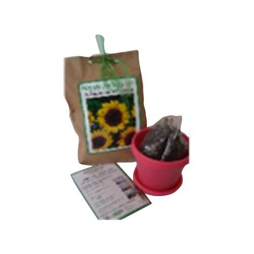 Seed Kit - DIY 7,5cm